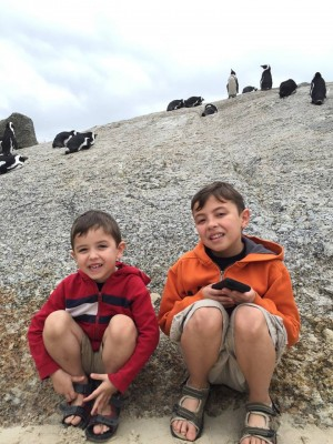 Sons & penguins at Boulder's Beach in Cape Town, South Africa.