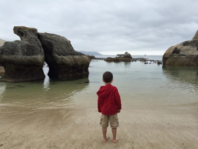 My son enjoyed seeing the penguins and playing in the water at Boulders Beach, Cape Town, South Africa.