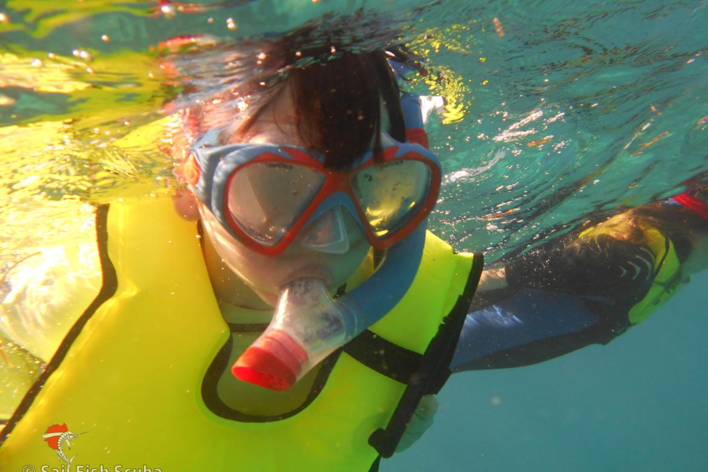 A Guide to Florida Keys Snorkeling - wanderingiphone com