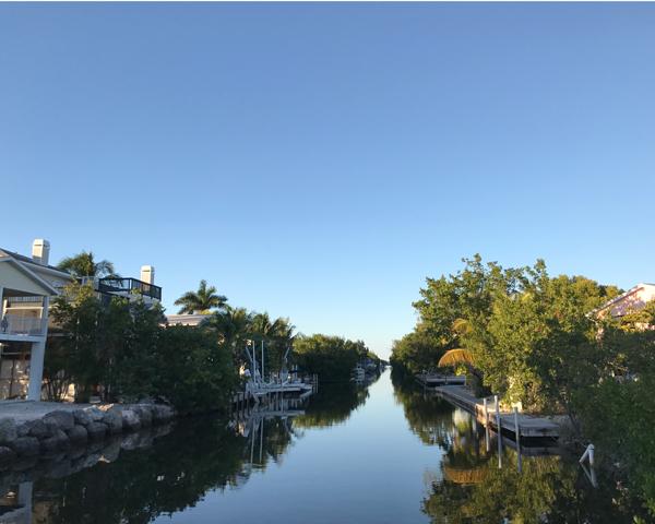 Canal near Looe Key Dive Centre and Resort Marina