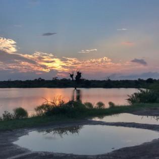 iPhone travel photography, wanderingiphone, mobile photography workshops, kruger sunset