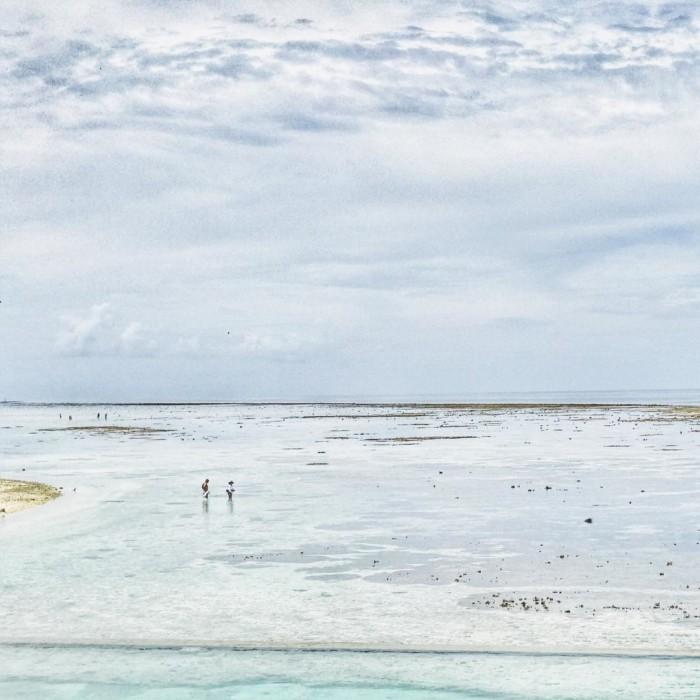 Heron Island Queensland Australia