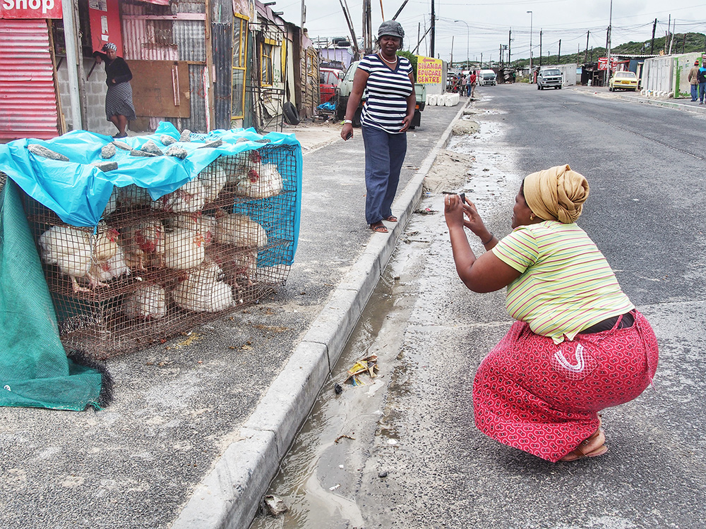 Veliswa Wowo, a married mother of 4 and a founding member of The Heart of a Woman Project in South Africa photographs live chickens in Khayelitsha. Inspired by the model of education and empowerment through the arts, I founded The Heart of a Woman Project, an initiative that partners with non-profit organizations focused on women's empowerment and skills development. The goal is to educate women impacted by poverty in mobile photography, technology and social media using donated previously owned iPhones. It aims to empower women to have a voice, a creative outlet and sustainable income through the sales of photographic products. I returned to eKhaya eKasi in November 2013 to pilot the program with 9 participants over an 11-day workshop.